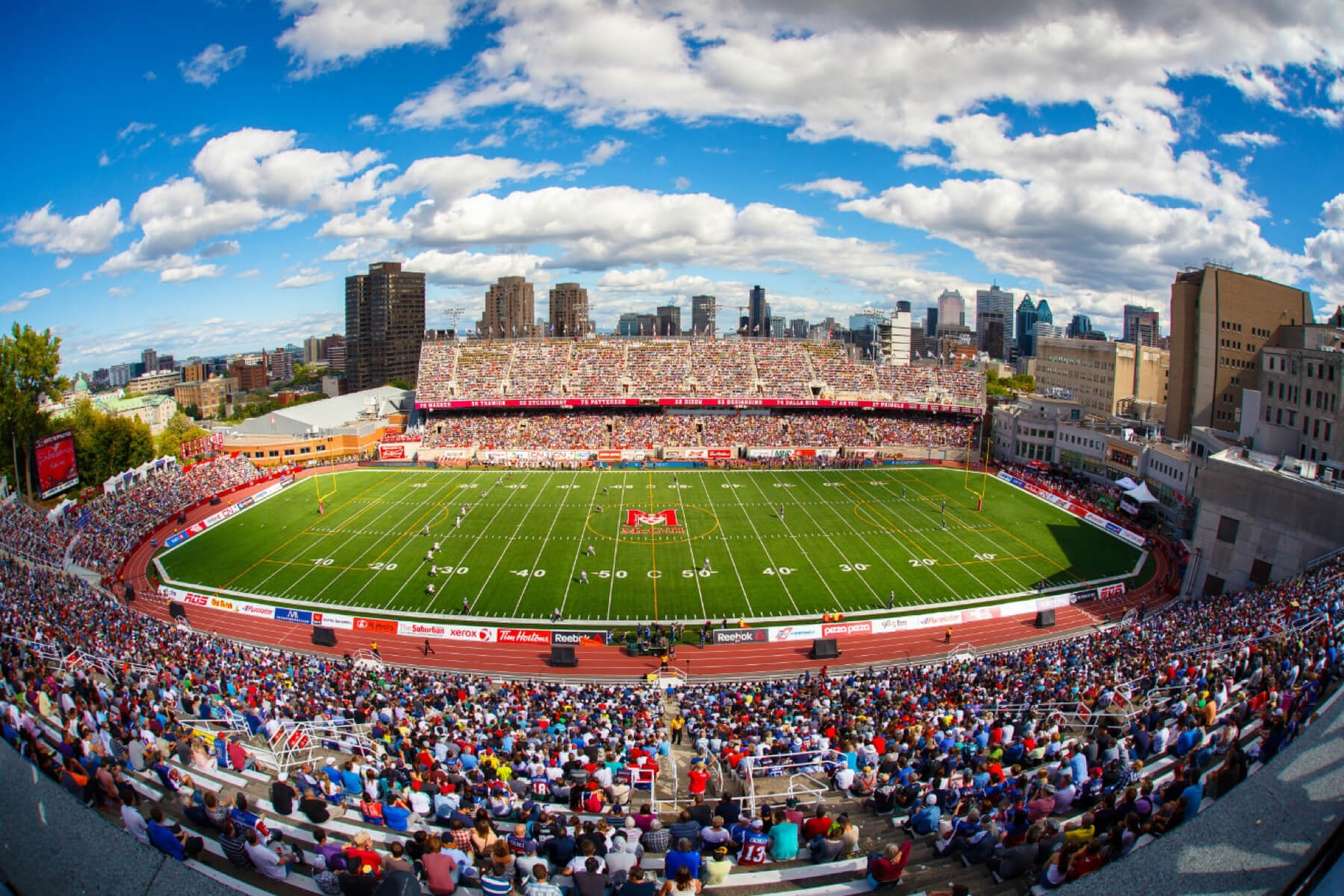 Montreal Alouettes' bid for the Grey Cup